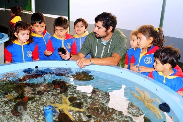Conociendo el mundo marino (2)