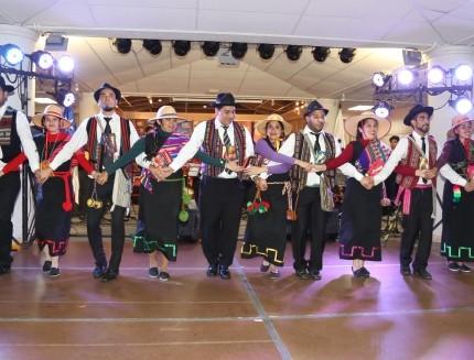 Grupos artísticos UA dieron sólida muestra de talento