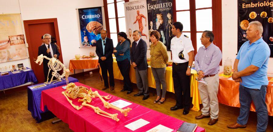 Inauguran exposición de anatomía en Mejillones