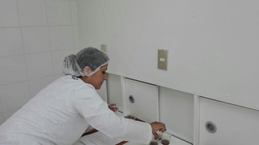Realizan evaluación sensorial de licores nativos del desierto de Atacama