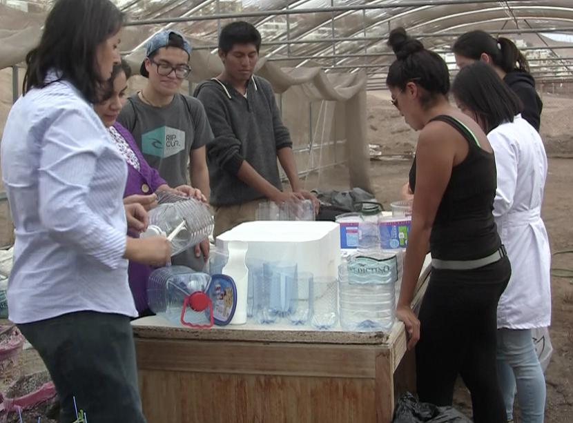 Comunidad UA trabaja en alimentación saludable y huertos urbanos