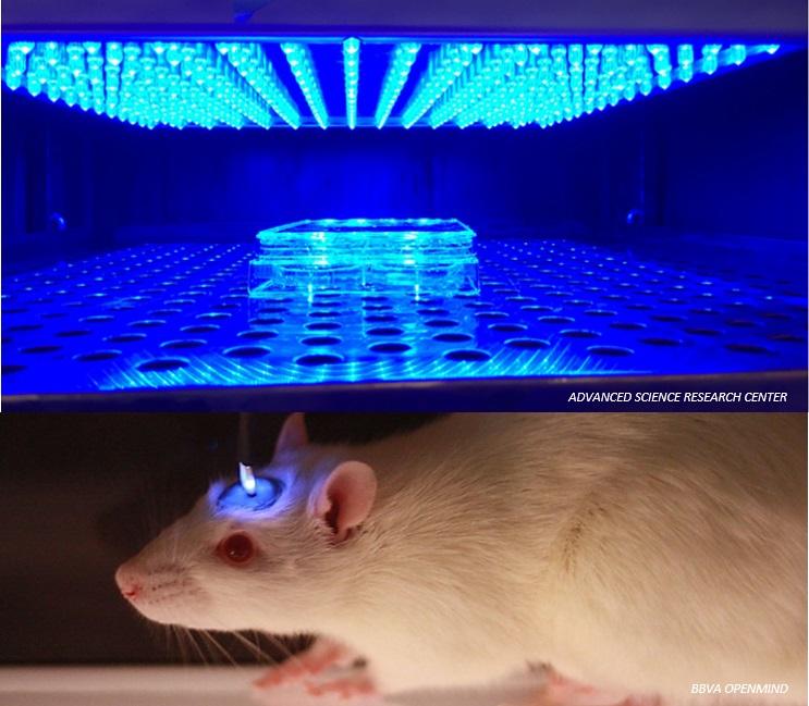 Científicos plantean crear interruptor molecular para la entrega regulada de biofármacos